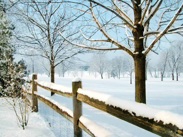 Winter-Scenes-for-Desktop5